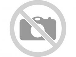 Плечо изогнутое шнека комплект Фамарол Z511